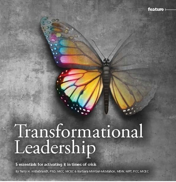 choice V18N3 Feature Transformational Leadership Hildebrandt McMahon